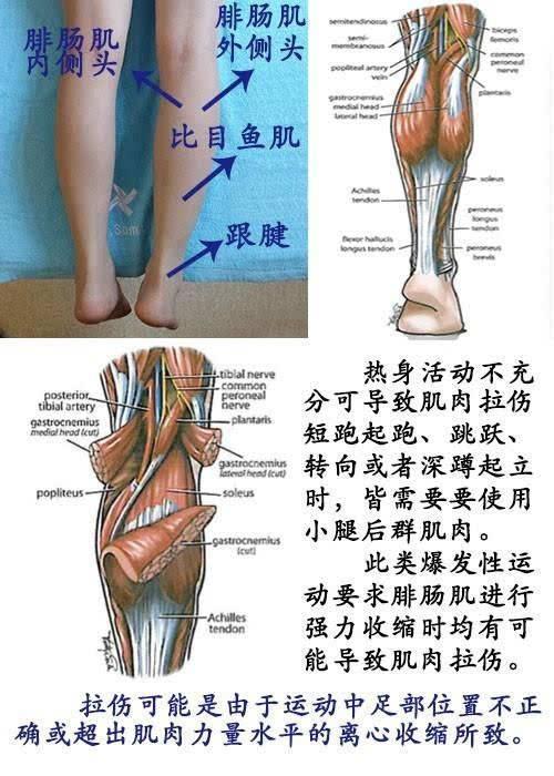 肌肉拉伤的经验总结